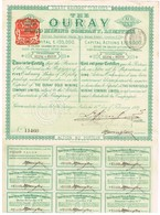 Titre Ancien - The Ouray Gold Mining Company Limited - Titre De 1889 - - Mines