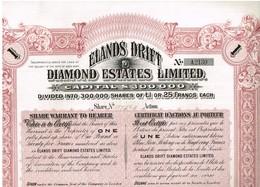 Titre Ancien - Elands Drift Diamond Estates Limited - Titre De 1902 - - Mines