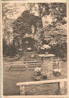 9Dp-769: Institut St Joseph LOCHRISTI Petit Coin Du Jardin / Instituut St-Jozef LOCKRISTI Een Hoekje In De Hof 1961 - Lochristi