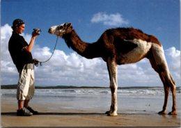 Advertising Silvertab Levis Camel Having Picture Taken - Advertising
