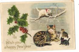 Cats - Artist Drawn Cat Sat In Snow, Minature Postcard - Cats