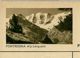 Carte Illustré Neuve N° 182 - 0286 G  PONTRESINA  Alp Languard  (Zumstein 2009) - Entiers Postaux