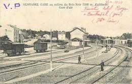 43 - SEMBABEL GARE  AU MILIEU DU BOIS NOIR - TRAIN - WAGONS - CHEMINOTS - Frankrijk