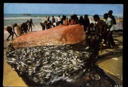 C1415 SENEGAL - COLEURS DU SENEGAL - SCÈNE DE PÊCHE AFRICAN FOLKLORE ETHNICS PEOPLE OF AFRICA - Senegal