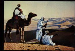 C1432 SAUDI ARABIA ARABAIA SAUDITA - ADVERTISING PUBBLICITÀ MICOFLAVINA  - NEGED NOMADS OF DESERT ETHNICS NOMADI - Arabia Saudita
