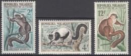 Du N° 357 Au N° 359 De Madagascar - X X - ( E 260 ) - Lémuriens - Stamps