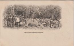 Asie :  Viêt  Nam : SAIGON  : Capture  D ' Un  éléphant  En   Annam - Viêt-Nam