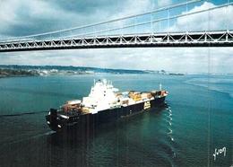 """C P S M C G M  """" Atlantic Cognac""""  ' Porte-contener Line 1970 La Ciotat 752 Containers - Comercio"""