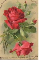 Illustrateur KLEIN Bouquet De Roses Rouges - Klein, Catharina