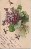 Illustrateur KLEIN  Bouquet De Violettes - Klein, Catharina