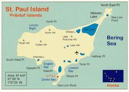 1 Map Of St. Paul Island - USA Alaska * 1 Landkarte Mit Der Insel St. Paul - Gehört Zu Den Pribilof Inseln - Bering Sea - Landkarten