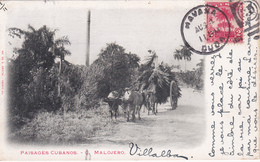 CUBA - Paisages Cubanos - C. Malojero - 1902 - Cuba
