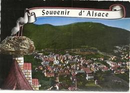 N 1293 WATTWILLER   VUE GENERALE 1969 - Autres Communes