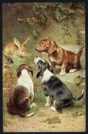 3 CHIENS Et 2 LAPINS - 3 DOGS And 2 RABBITS - 3 HONDEN En 2 KONIJNEN - Circulé - Circulated - Gelaufen - 1921. - Chiens