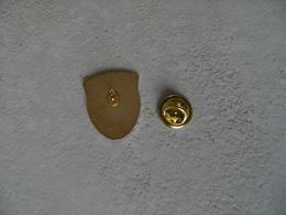 Pin's FOUGERES Les Archers De COIGNY Tir à L'arc Flêche,époxy. - Tiro Con L'Arco