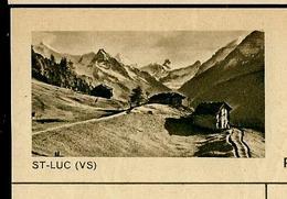 Carte Illustré Neuve N° 182 - 0352 G  ST - LUC (VS) (Zumstein 2009) - Ganzsachen
