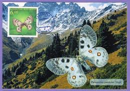 Kazakhstan 1996. Butterflies. Fauna. Insects.  Maxicard.  Maximum Cards - Mariposas