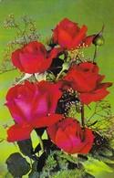 AK Blumenstrauß Mit Rosen (41675) - Blumen