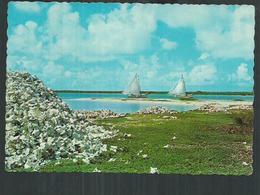 Netherlands Antilles. Bonaire, - Bonaire