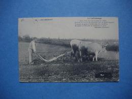 AU BERRY  -  36  -  Le Labourage  -  1913 - France