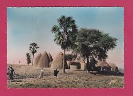 CAMEROUN - POUSS - Cases Obus Avec Palmier Ronier Et épineux - Cameroon