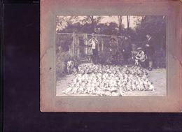 Photo Cartonnée Scene De Chasse Au Domaine Siberol De Floirac En Gironde - Lieux