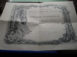 DIPLÔME D'HONNEUR Féd. Des Soc. MUSICALES Du NORD Et Du PAS-DE-CALAIS > Anno 1908 : Format 38 X 51 Cm. > Voir Photo ! - Musique & Instruments