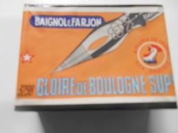 PLUMES Baignol Et Farjon - GLOIRE De BOULOGNE - Pleine- 3298 - Piume