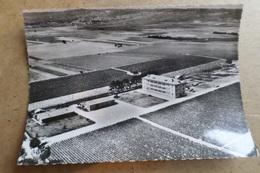 AVIZE - Vue Aérienne - Les Briquettes - Vendangeoires G.H Mumm  ( 51 Marne ) - Altri Comuni