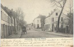 AUDERGHEM : Les Trois Tilleuls - Cachet De La Poste 1904 - Auderghem - Oudergem