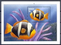 GRENADA (FAU 061) - Fische