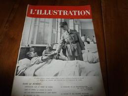 1941 L'ILLUSTRATION : Maurice Arnoux,aviateur;Pétain à Aix-en-P.;Gorey(Jersey);Jeunes Marins Au Cap Matifeu;Russie; Etc - Journaux - Quotidiens