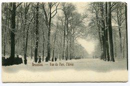 CPA - Carte Postale - Belgique - Bruxelles - Vue Du Parc, L'Hiver - 1903 (B8857) - Forêts, Parcs, Jardins