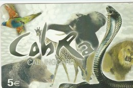 Portugal - Cobra - Animals - Portugal