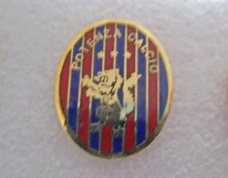 Potenza Calcio Distintivi FootBall Soccer Pin Spilla Italy - Calcio