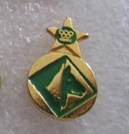 US Avellino Calcio CONI Distintivi FootBall Soccer Pin Spilla Italy - Calcio