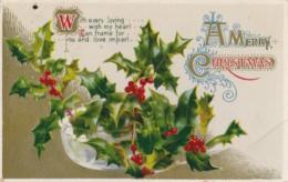AQ31 Greetings - A Merry Christmas, Holly, Berries - Christmas