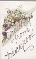 AQ31 Greetings Postcard - Greetings From Blackpool - Glitter, Flowers - Holidays & Celebrations