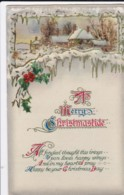 AQ31 Greetings - A Merry Christmastide - Snow, Village Scene, Holly, Berries - Christmas