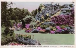 AR29 In The Sunken Gardens, Butchart's Gardens, Victoria, B.C. - RPPC - Victoria