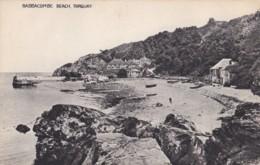 AS46 Babbacombe Beach, Torquay - Torquay