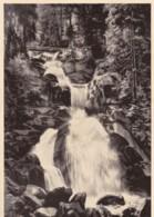 AS46 Triberg, Wasserfallen - Triberg