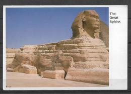 EGYPT POSTCARD GREAT SPHINX - Egypt