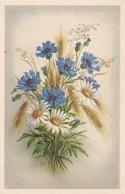 AK  Feldblumen Weizen Margeriten  (41707) - Blumen