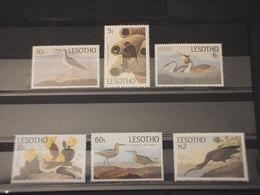 LESOTHO - 1985 UCCELLI 6 VALORI - NUOVI(++) - Lesotho (1966-...)
