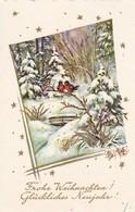 AK Frohe Weihnachten - Glückliches Neujahr - Vögel In Winterwald - 1963 (41726) - Christmas