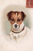 CPA - CHIEN (voir Descriptif) - Dogs