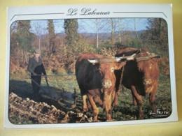 B21 3094 CPM - LE LABOUREUR - ANIMATION. ATTELAGES DE VACHES - Cultures