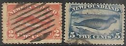Newfoundland   1887  Sc#48   2c Fish & #54 5c Seal  Used  2016 Scott Value $19.50 - Newfoundland