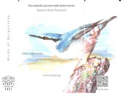 Kyrgyz Express Post 2018: Sittelle Des Rochers / Eastern Rock Nuthatch / Klippenkleiber (Sitta Tephronota) - Sperlingsvögel & Singvögel